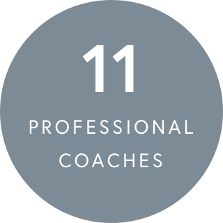 11 Professional coaches